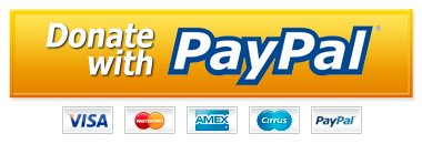PayPal-Donate-Button-PNG-HD.png